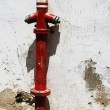 Old fire hydrant — Stock Photo #38169183