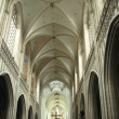 Stock Photo: Nave of Catedral in Antwerp