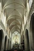 Trojlodní katedrála v antverpách — Stock fotografie