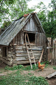 The hen and old hayloft — Stock Photo