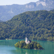 Stock Photo: Lake bled