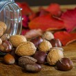 Fall fruits 4 — Stock Photo