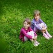 Two young smiling girls in the grass — Stock Photo #35433643