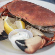 Devon Crab on plate — Stock Photo