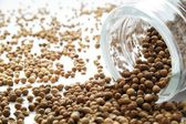 Coriander seeds spilling from glass jar — Stock Photo