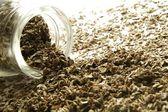 Salvia seca derramando de tarro de cristal — Foto de Stock