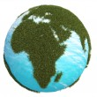 Earth green grass europe africa south north — Stock Photo