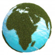 Earth green grass europe africa south north — Stock Photo #31533453