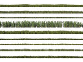 Grass library — Stock Photo