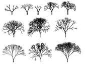 Trees silhouette outline — Stock Photo