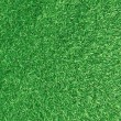 Green grass background — Foto Stock