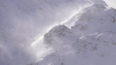 Silny wiatr wiejący płatki śniegu — Wideo stockowe
