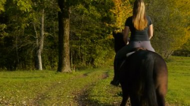 Girl horseback riding in forest — Stock Video