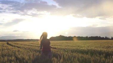 Flicka i vete fält — Stockvideo