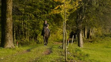 Young woman riding horse — Stock Video