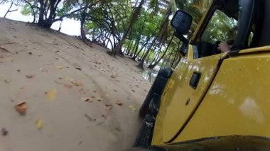 Driving through puddles in the rainforest — Stockvideo