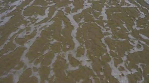Vagues sur la plage de sable — Vidéo