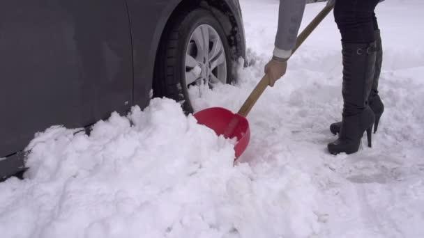 Femme pelleter la voiture hors neige. — Vidéo