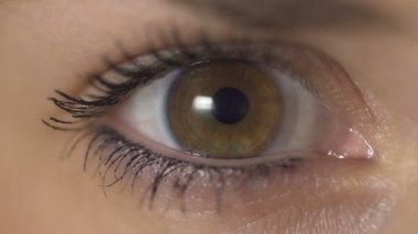 Contraction of the pupil — Stock Video