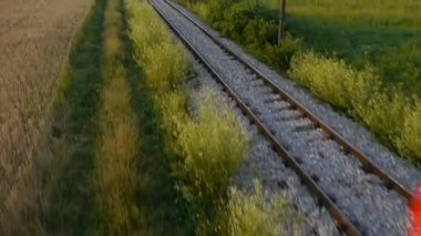 Train on railroad — Stock Video