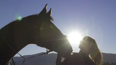 Young woman and horse nature. — Stock Video