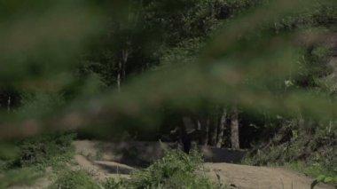 Bmx biker riding wheelie — Stock Video