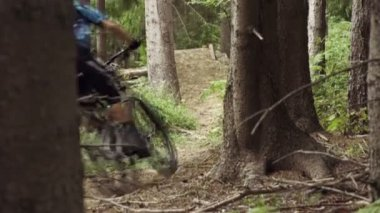 Downhill biker in the forest — Stock Video