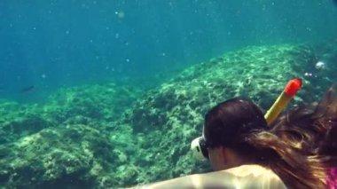 Diver swimming underwater — Stock Video