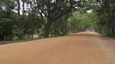 Tuk tuk driving in Sri Lanka — Stock Video