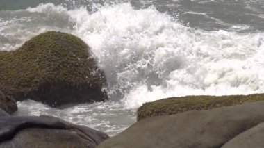 Waves splashing on rocks — Stock Video