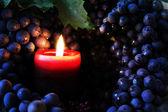 Vela y uvas — Foto de Stock