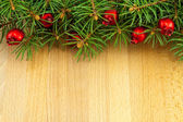 Christmas border with red berries — Stock Photo