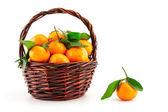Organic ripe mandarins (tangerines) in basket — Foto Stock
