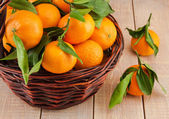 Ripe mandarins with leaves in a basket — Stock Photo