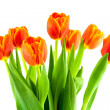Bouquet of yellow and orange tulips isolated — Stock Photo