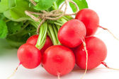 A bunch of fresh radishes on white — Stock Photo