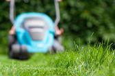 Vers gemaaid gras — Stockfoto