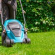 Green grass is mowed lawn mower — Stock Photo #48608313