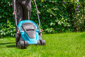 Green grass is mowed lawn mower — Stock Photo
