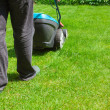 Green grass is mowed lawn mower — Stock Photo #48938043