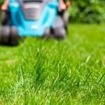 Blue lawn mower on green gras — Stock Photo #49471799