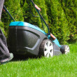 Green grass is mowed lawn mower — Stock Photo #49471679