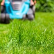 Blue lawn mower on green gras — Stockfoto #49471799