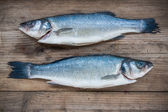 Two raw seabass fish on wooden background — Stock Photo