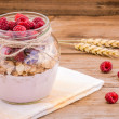 Breakfast: cereal with raspberries and yogurt — Stock Photo #49485281