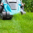 Blue lawn mower on green gras — Stockfoto #49733507