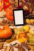 Autumn decoration — Stock Photo