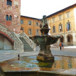 Fountain of Bacchino, Prato, Tuscany, Italy — Stock Photo