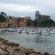 View of Lerici, Liguria, Italy — Stock Photo #36239305