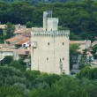 Stock Photo: Tower on banks of Rhone